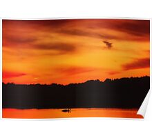 Swimming in Sunset Skies Poster