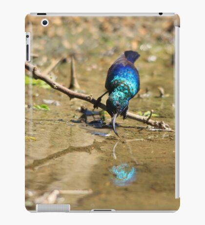 White Belly Sunbird - Beautiful Blue  iPad Case/Skin