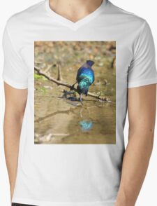 White Belly Sunbird - Beautiful Blue  Mens V-Neck T-Shirt