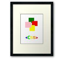 CSS Framed Print