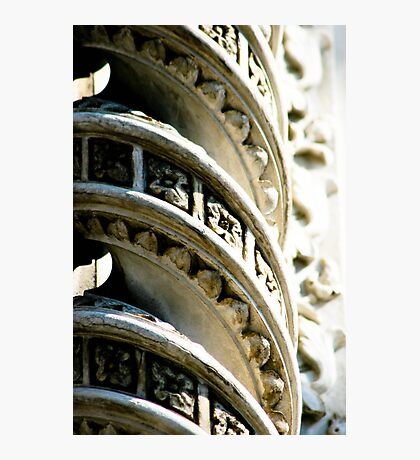 Twisted Beauty Photographic Print