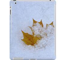 Lonely leaf iPad Case/Skin