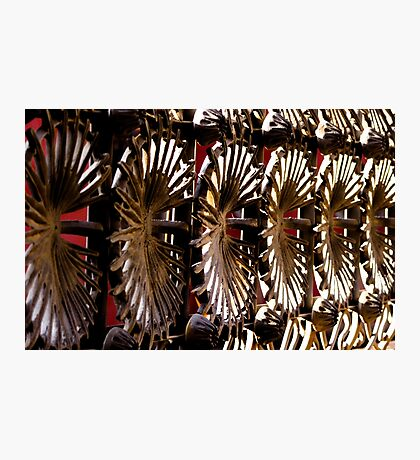 Radial Points Photographic Print