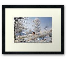 Glen Shiel Misty Winter Deer Framed Print