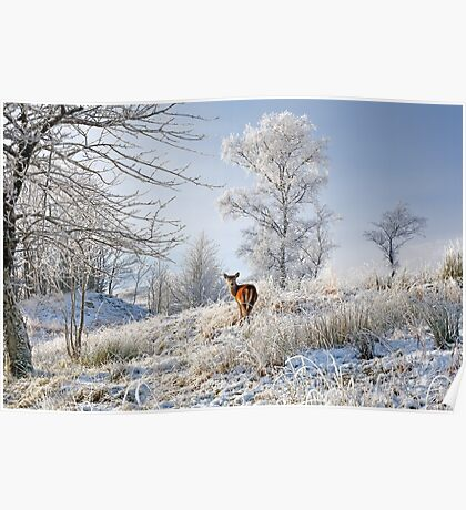 Glen Shiel Misty Winter Deer Poster