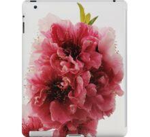 Peach Branch iPad Case/Skin