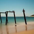 1167 Cat Bay Jetty by DavidsArt