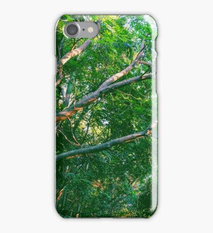Summer Trees iPhone Case/Skin