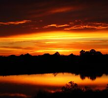 Sunset Over League City Texas by Nathan Little