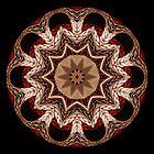 Kaleidoscope Pattern 04 by fantasytripp