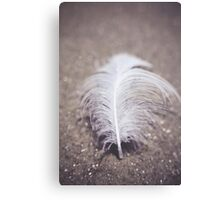 Like a Feather on the Wind Canvas Print