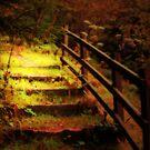 STEP INTO AUTUMN by leonie7