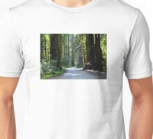Stout Grove Trail Unisex T-Shirt