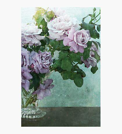 Perfumed Rose Garden Photographic Print