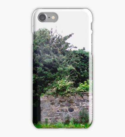 Derelict Cottage, Donegal, Republic of Ireland iPhone Case/Skin