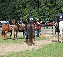 Deer Run Horse Show Club Sept. 20, 2014 (127) by DLitefulImagery