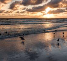 Sunset Gulls Sticker