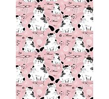 pattern with cats  Photographic Print