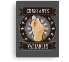 Constants & Variables Canvas Print
