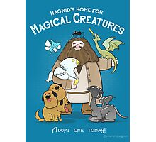 Hagrid's Home for Magical Creatures Photographic Print