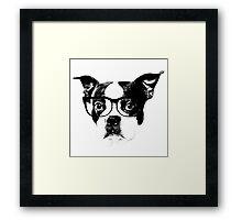 Boston terrier glasses  Framed Print