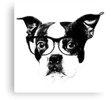 Boston terrier glasses  Canvas Print