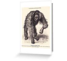 vector monkey Greeting Card