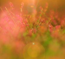 Pink Flower Garden - Heaven's Light and Wonder of Color Sticker