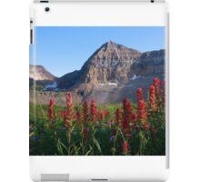 Timpanogos Paintbrush iPad Case/Skin