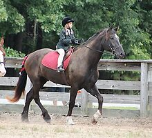 Deer Run Horse Show Club Sept. 20, 2014 (161) by DLitefulImagery