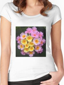 flower close up Women's Fitted Scoop T-Shirt