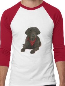 Chocolate Labrador Men's Baseball ¾ T-Shirt