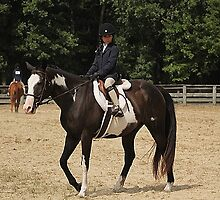 Deer Run Horse Show Club Sept. 20, 2014 (187) by DLitefulImagery
