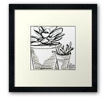 Agave Pots  Framed Print