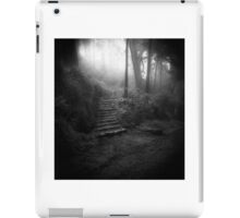 Mountain Steps B&W (Holga) iPad Case/Skin