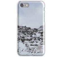 Panoramic Ptarmigan area iPhone Case/Skin