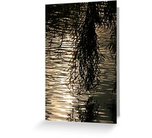 Weeping Willow Silhouette by Water Greeting Card
