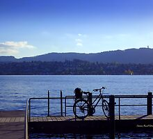 Bicycle at Zürichsee by Charmiene Maxwell-batten