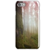 A Morning in Sutro Forest iPhone Case/Skin