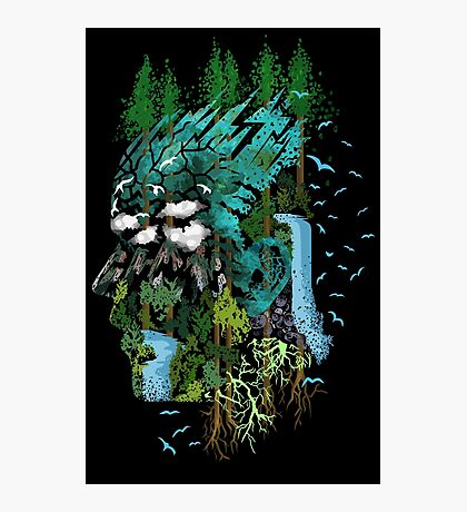 Father Earth Photographic Print