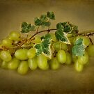 Grapes with Ivy by Ellesscee