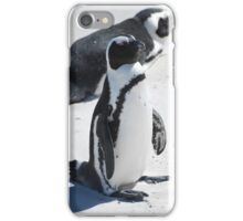 Penguin on Boulder Beach iPhone Case/Skin