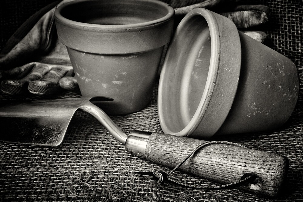 In the Potting Shed by Ellesscee