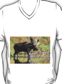 Cooling off T-Shirt