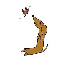 Dachshund With Autumn Leaf  by TheyComeAlong