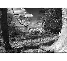 Wintery Shire Photographic Print