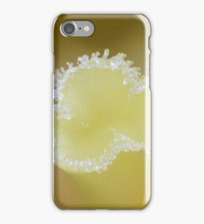 Centre to the universe iPhone Case/Skin