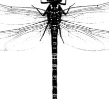 The Dragonfly Sticker