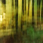 Artscape.......The Forest flooded with Light by Imi Koetz