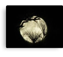 moony Canvas Print